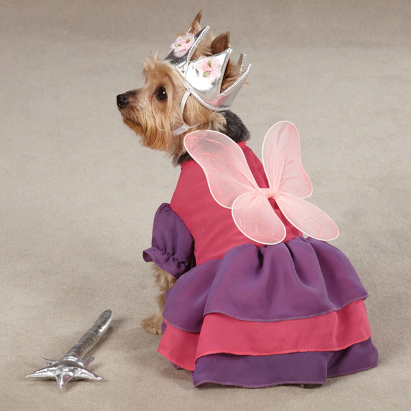 fairy-princess-dog-halloween-costume-1